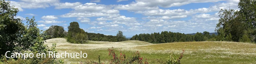 Campo-en-Riachuelo-Panoramica